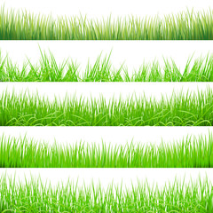 5 Backgrounds Of Green Grass, Isolated On White Background, Vector Illustration