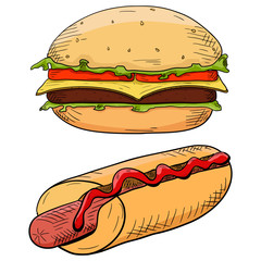 Burger and hot dog. Hand drawn colored sketch
