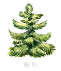 Watercolor christmas tree.