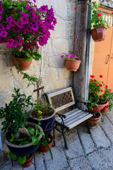 Summer flower place in small town, Cyprus
