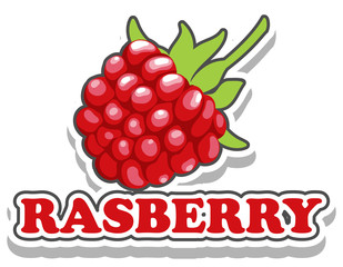 Font design with word raspberry