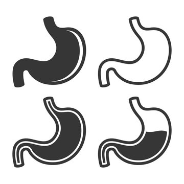 Stomach Icon Set on White Background. Vector
