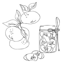 vector contur illustration of mandarin jam in jar and fruit