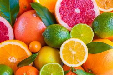 Photo sur Plexiglas Fruit Various citrus fruits (orange, grapeftuit, lemon, mandarine, lime)