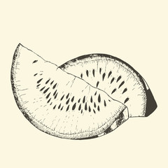Watermelon sketch hand drawn. Vector Illustration.
