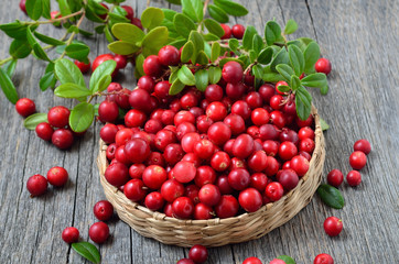 Red lingonberry in wicker basket