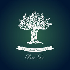 Leaf on branches of olive oil tree vector drawing