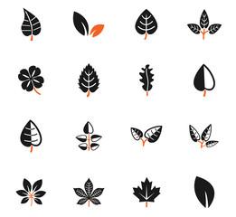 leaves icon set