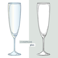 Vector illustration with contour champaign glass or flute in black and color isolated on white background. Outline glass for wine and winery in linear style for restaurant decor or coloring book.