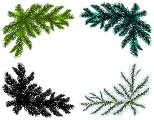 Set. Blue, black, white and green Christmas tree branches on an isolated white background. illustration