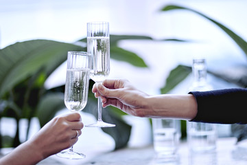 Champagne in beautiful glass. Clink glasses. Meeting in a city restaurant or cafe. Houseplants near window, daylight