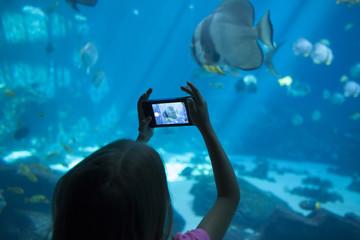 Little girl taking picture at aquarium