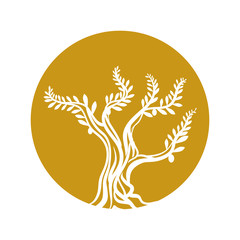 tree olive branch sketch icon yellow circle vector illustration eps 10