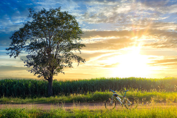 beautiful landscape image with Bicycle at sunset, Bicycle with a