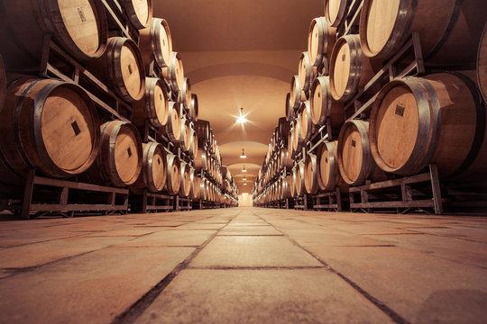 Wine oak barrell in cellar