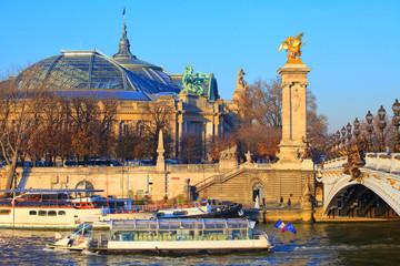 Batobus sur la seine près du grand palais et du pont Alexandre 3 Fototapete