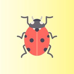 ladybug icon. flat design