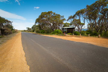 asphalt road in Walpole ,Australia .