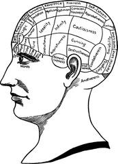 Vintage image  phrenology