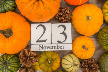 Date 23 november, thanksgiving, surrounded by pine apples and orange and green pumpkins