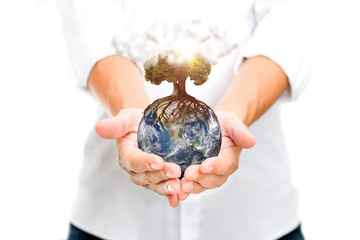 Planet Earth in the hand. Isolated on white background. Elements