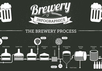 Beer Brewing Infographic