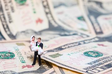 Hochzeit teuer Geld heirat Dollar USA