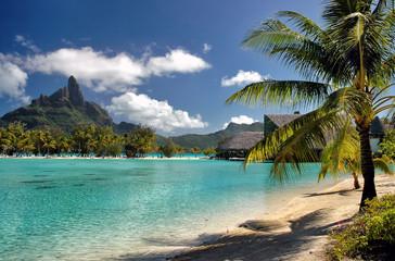 Serene Bora Bora beach scene with palm trees, green ocean and mountains background
