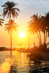 Sunset with silhouettes of palm trees on a tropical beach.