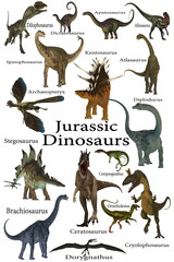 Jurassic Dinosaurs - This is a collection of various dinosaurs including carnivores, herbivores and flying reptiles that lived in the Jurassic Period.