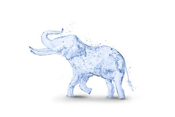 Elephant water splash 3D