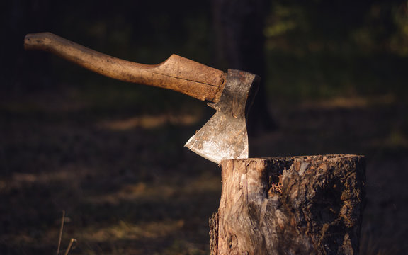 Axe in chopping block