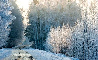 Winter landscape. Trees in hoarfrost. Country road. Cold season.