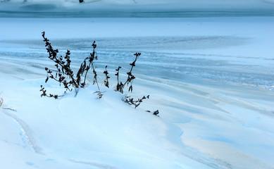 texture, background, pattern. Snow. atmospheric water vapor froz