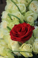 Red rose in a white wedding bouquet
