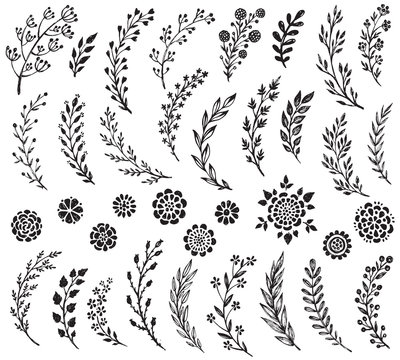 Big set of hand drawn vector flowers and branches
