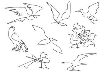 linear sketch birds silhouette set hand drawn