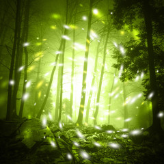 Wall Mural - Fantasy yellow green color foggy forest tree landscape scene with mystic firefly lights.