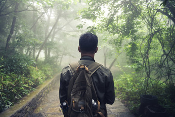 Man walking in forest with mist nature background, Travel Lifest