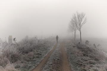 Winterspaziergang, Elbe Lübeck Kanal, Nebel, Wanderer, Spaziergänger