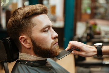 Handsome man getting beard haircut by hairdresser
