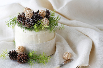 Layered Cake with pine cones and greenery and space for text