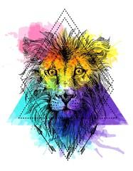 sketch illustration lion