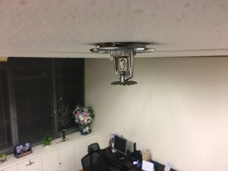 Automatic Ceiling Fire Sprinkler In The Modern Office Interior , Select  Focus At Springkler