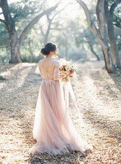 Bride standing in rural setting, rear view