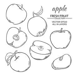 apples vector set