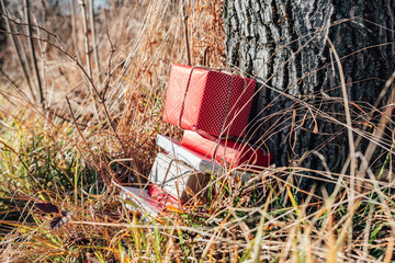 Gift boxes in nature