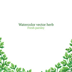 Watercolor vector frame with parsley