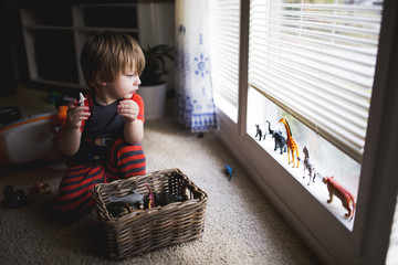 Young boy at home, playing with toy animals