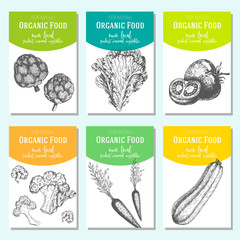 Hand drawn sketch vegetables. Vector banner collection. Organic food banner set. Vector illustration